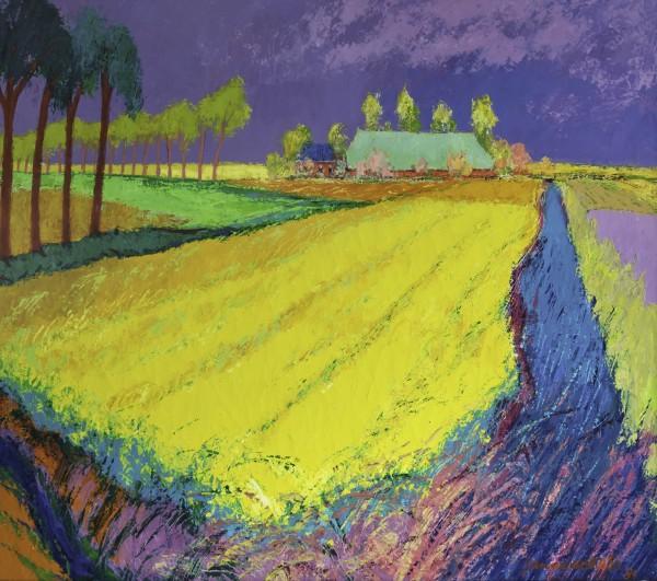 visualia-1214-jannes-de-vries-koolzaadveld-met-boerderij